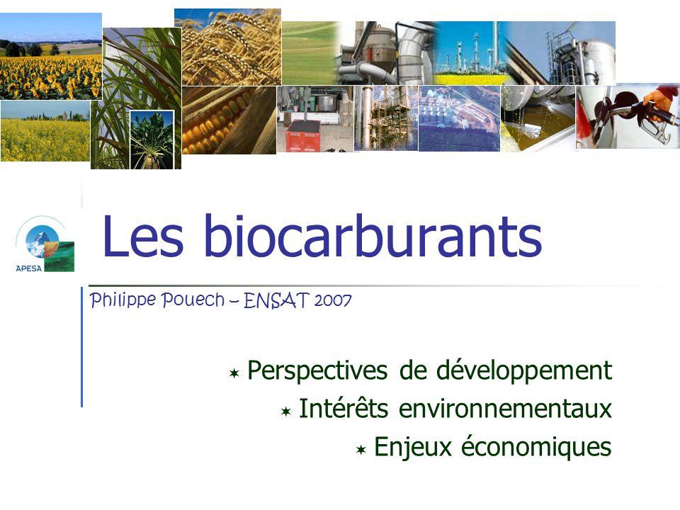 Les biocarburants Perspectives de développement