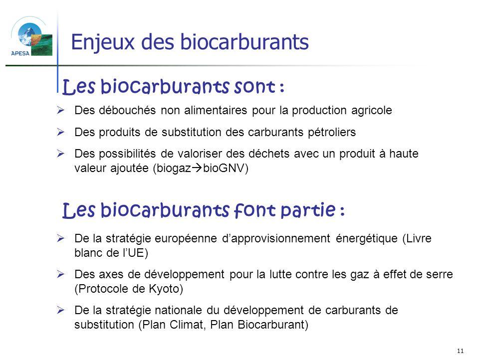 Enjeux des biocarburants