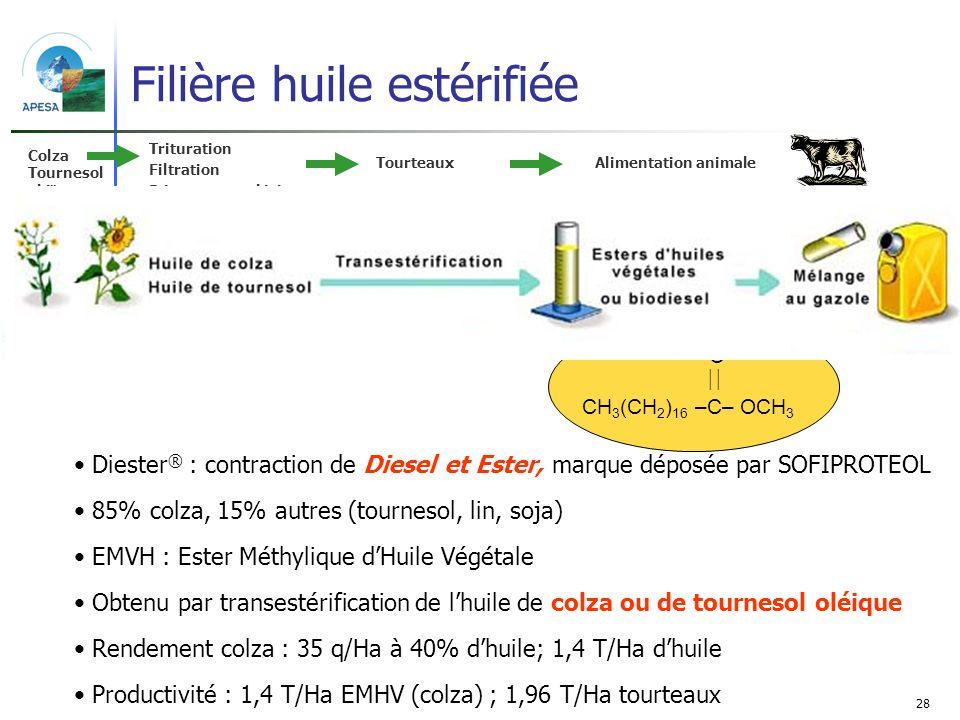 Filière huile estérifiée