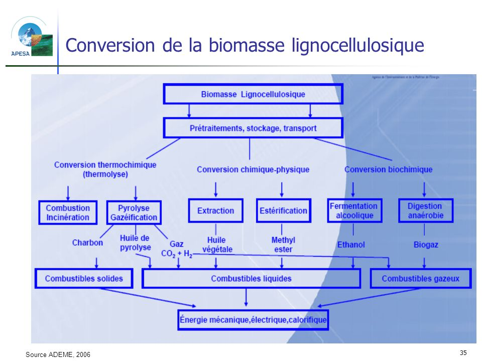 Conversion de la biomasse lignocellulosique