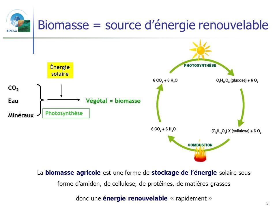Biomasse = source d'énergie renouvelable