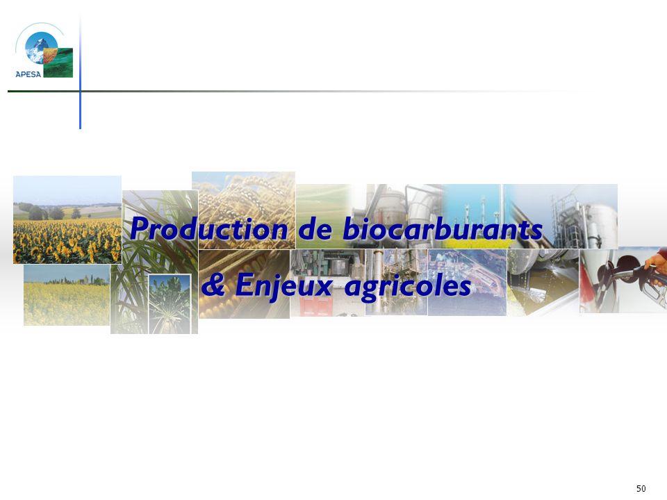 Production de biocarburants