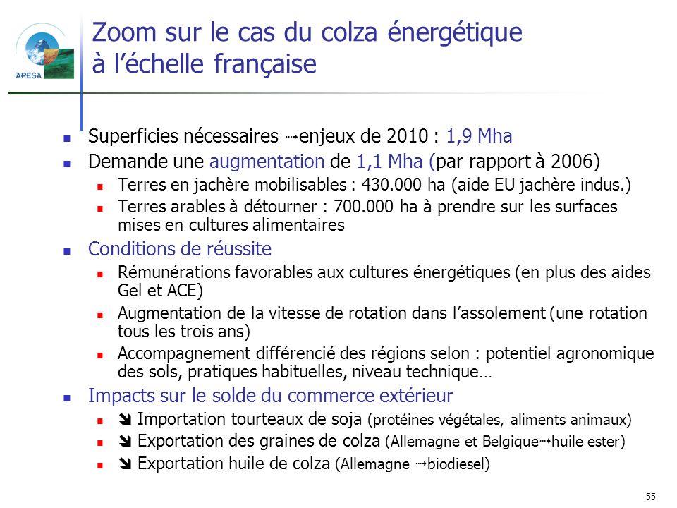 Zoom sur le cas du colza énergétique à l'échelle française