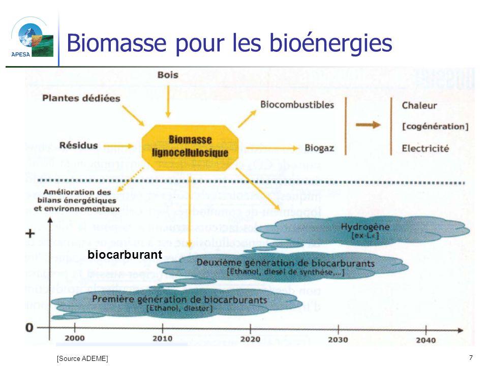 Biomasse pour les bioénergies