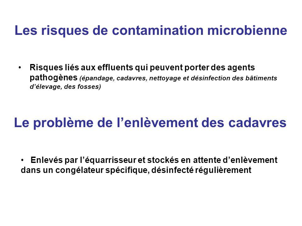 Les risques de contamination microbienne