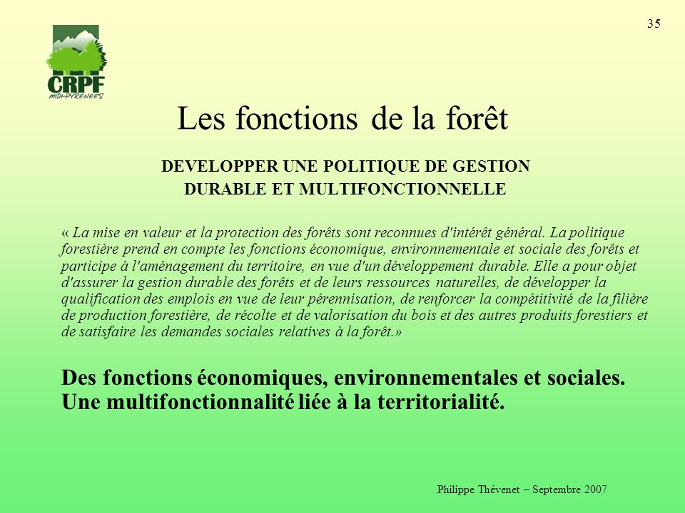 Les fonctions de la forêt