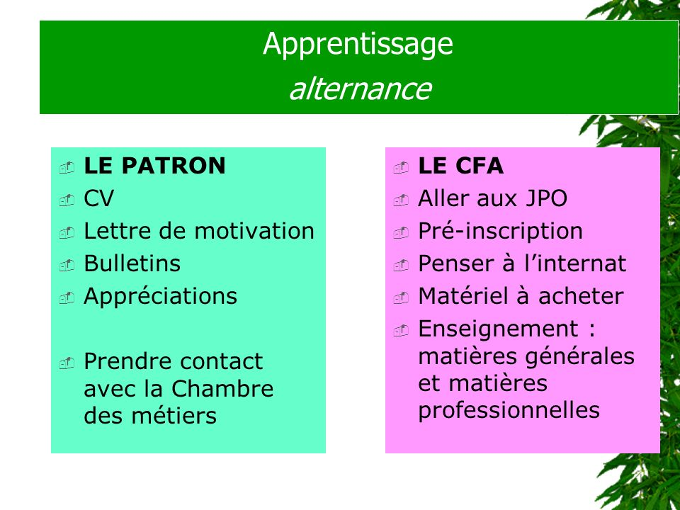 Apprentissage alternance