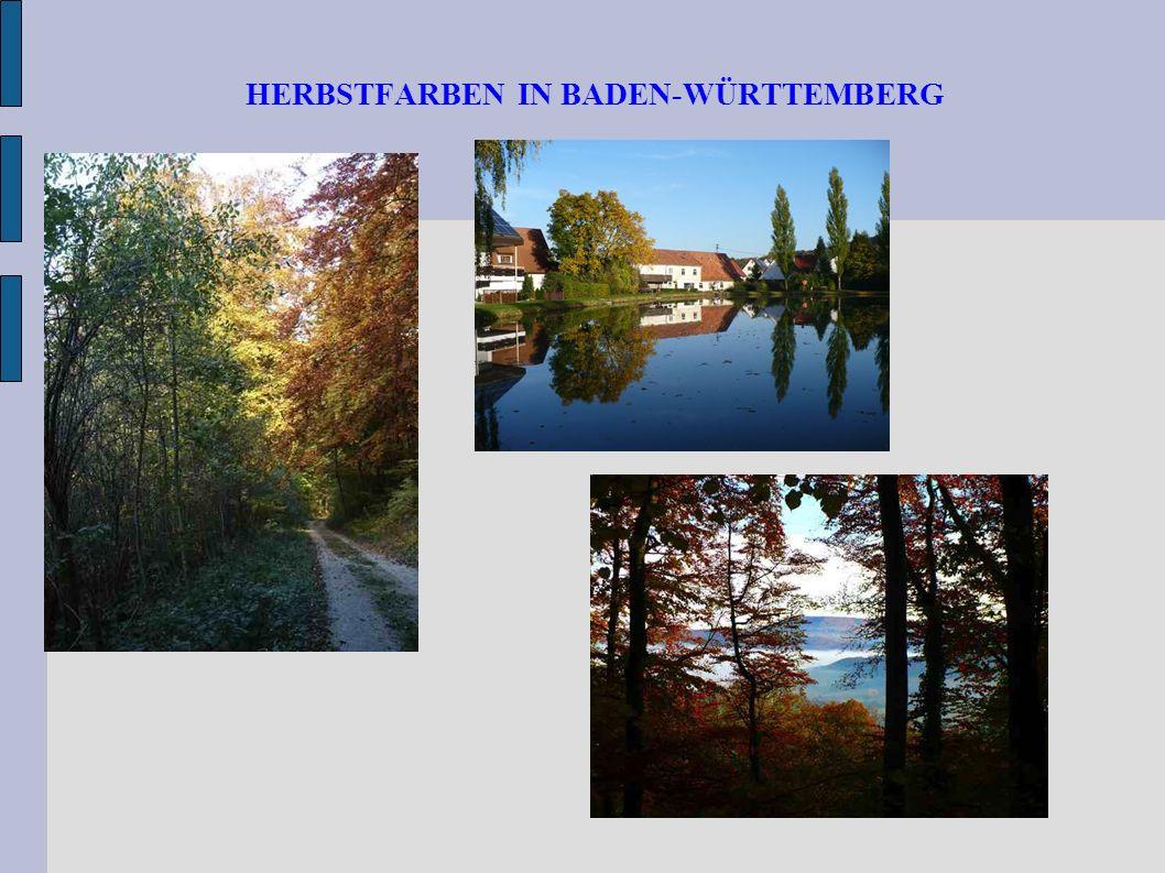 HERBSTFARBEN IN BADEN-WÜRTTEMBERG