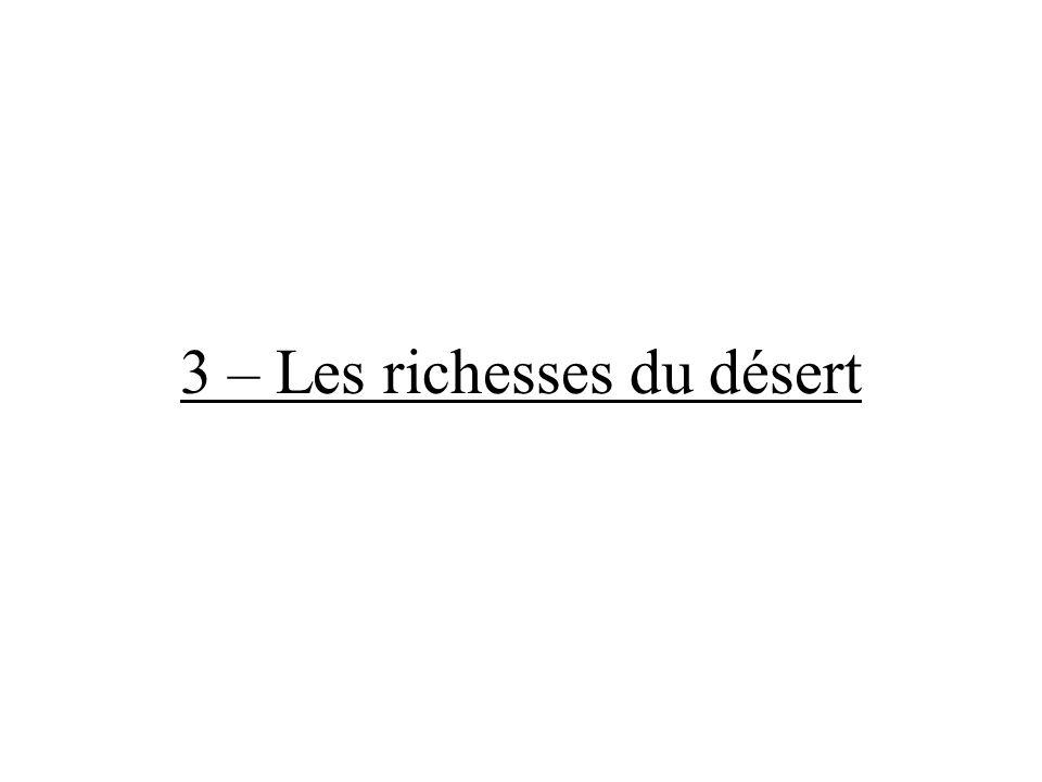 3 – Les richesses du désert