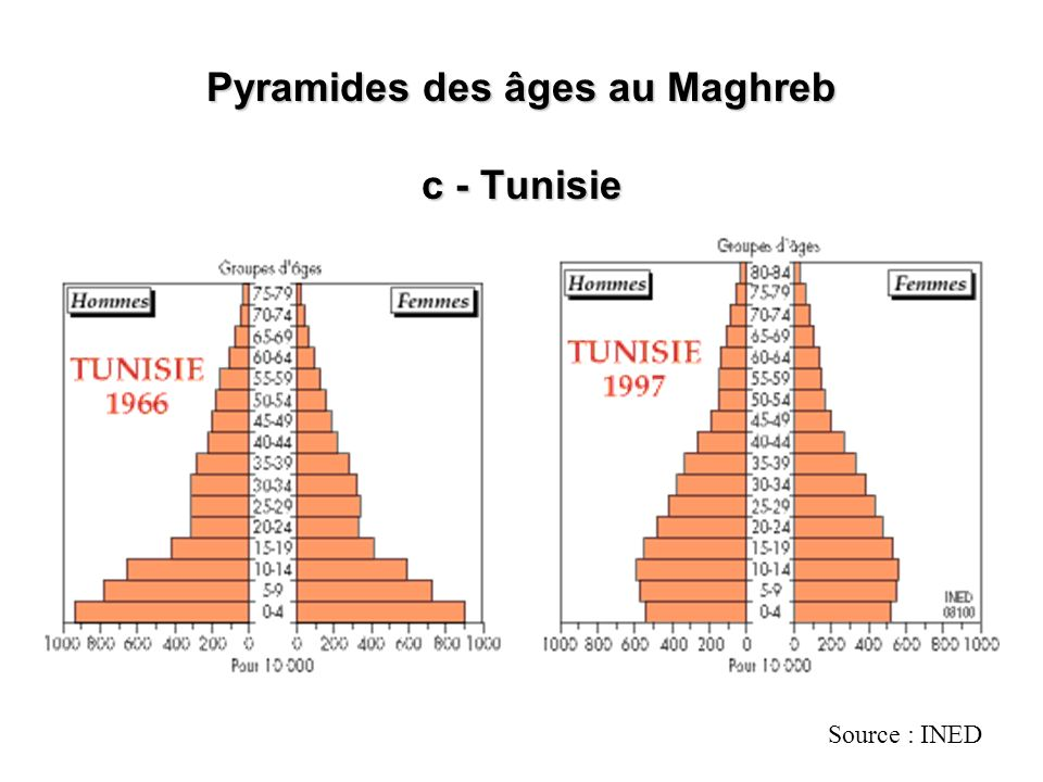 Pyramides des âges au Maghreb c - Tunisie