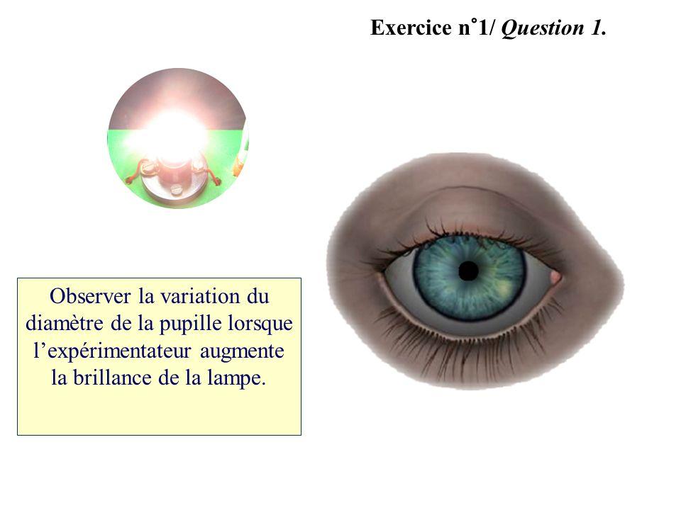 Exercice n°1/ Question 1.Observer la variation du diamètre de la pupille lorsque l'expérimentateur augmente la brillance de la lampe.