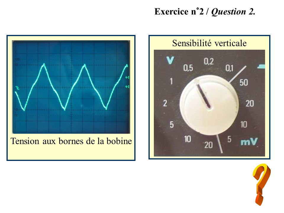 Exercice n°2 / Question 2. Sensibilité verticale