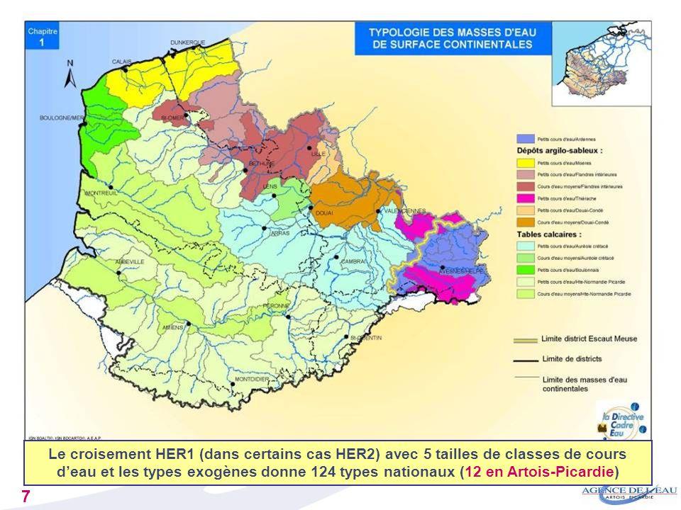 Le croisement HER1 (dans certains cas HER2) avec 5 tailles de classes de cours d'eau et les types exogènes donne 124 types nationaux (12 en Artois-Picardie)