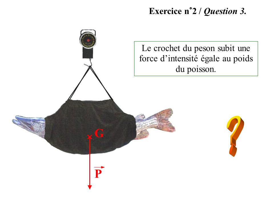 G P Exercice n°2 / Question 3.
