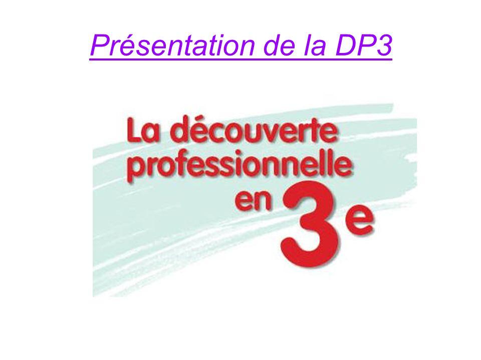 Présentation de la DP3