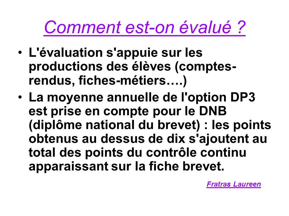 Comment est-on évalué L évaluation s appuie sur les productions des élèves (comptes-rendus, fiches-métiers….)