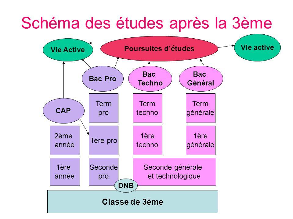 Schéma des études après la 3ème