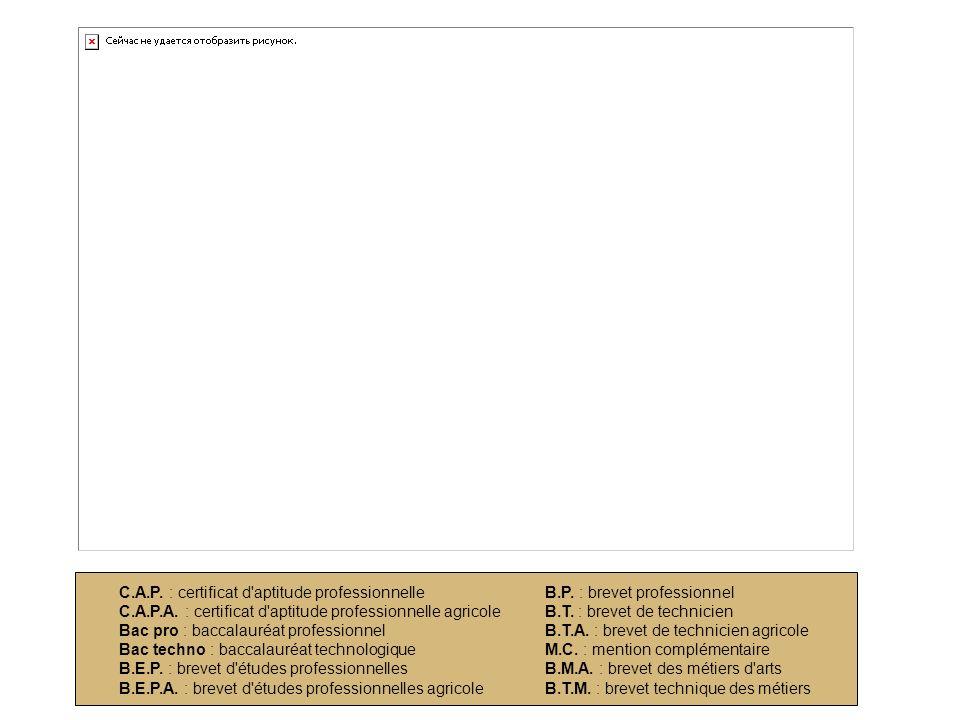 C. A. P. : certificat d aptitude professionnelle C. A. P. A