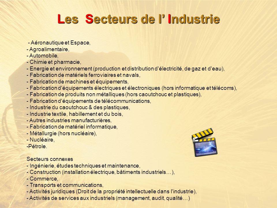 Les Secteurs de l' Industrie