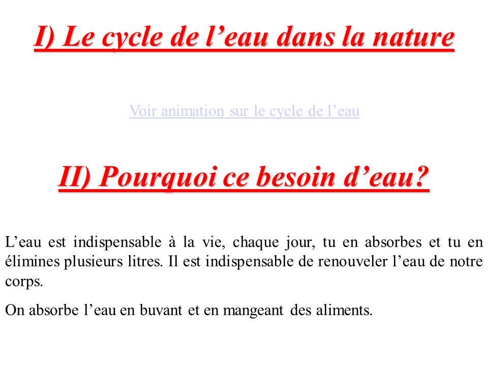 I) Le cycle de l'eau dans la nature