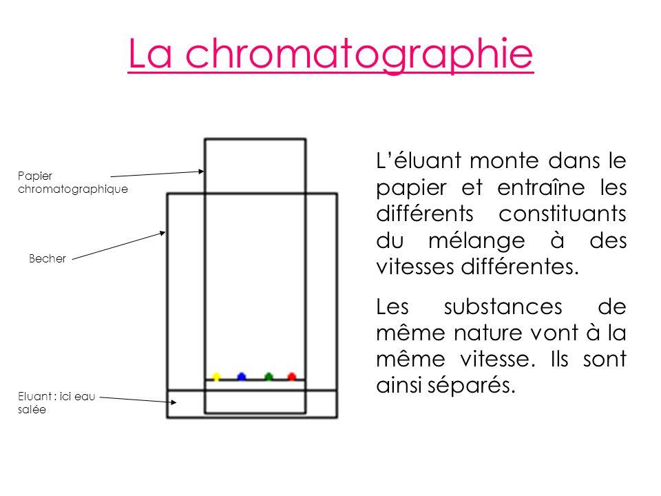 La chromatographie L'éluant monte dans le papier et entraîne les différents constituants du mélange à des vitesses différentes.