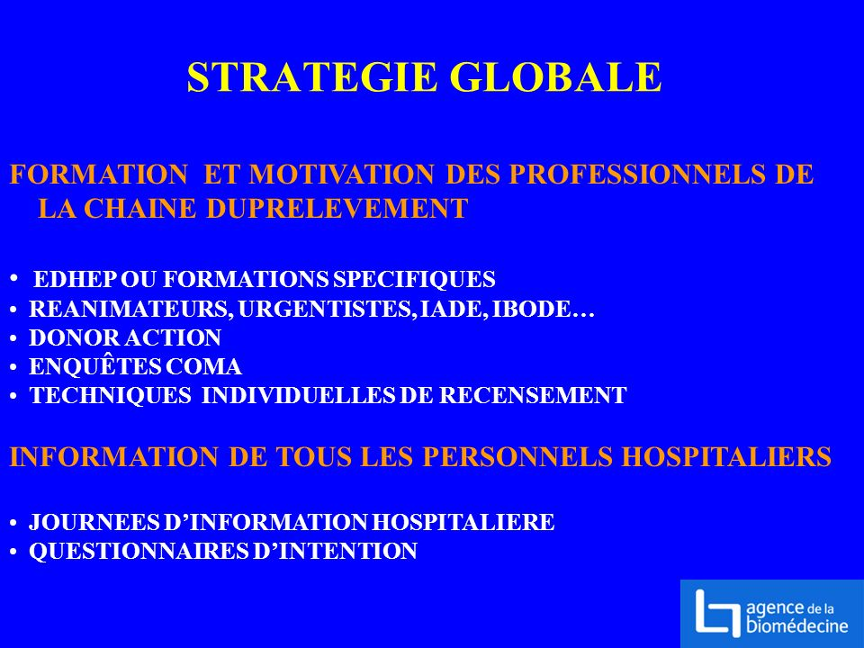STRATEGIE GLOBALE FORMATION ET MOTIVATION DES PROFESSIONNELS DE