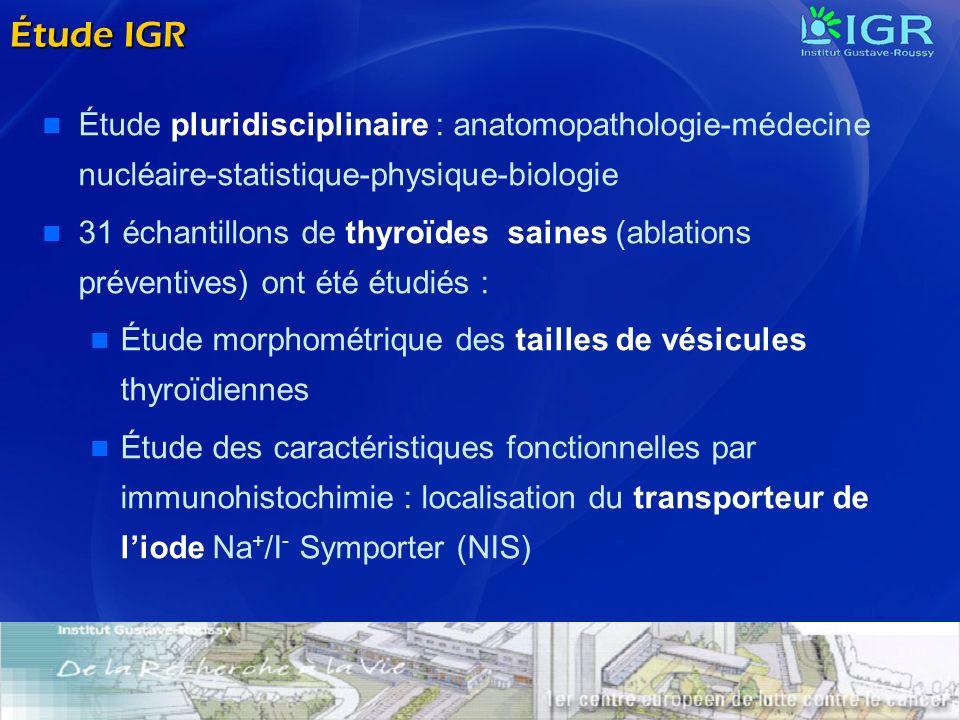 Étude IGR Étude pluridisciplinaire : anatomopathologie-médecine nucléaire-statistique-physique-biologie.