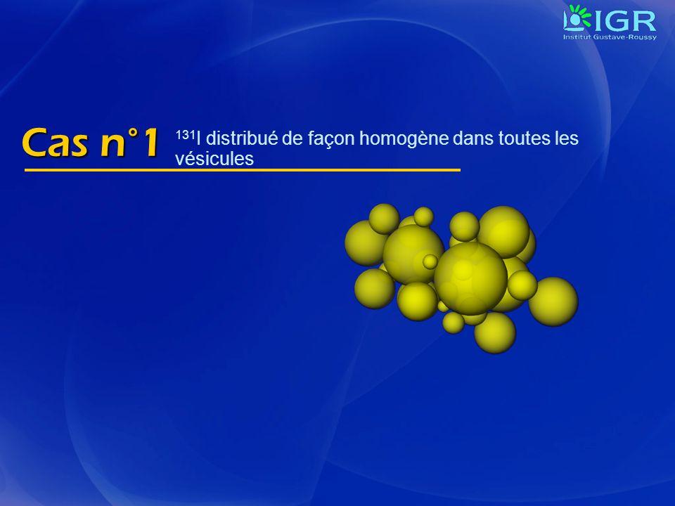 Cas n°1 131I distribué de façon homogène dans toutes les vésicules