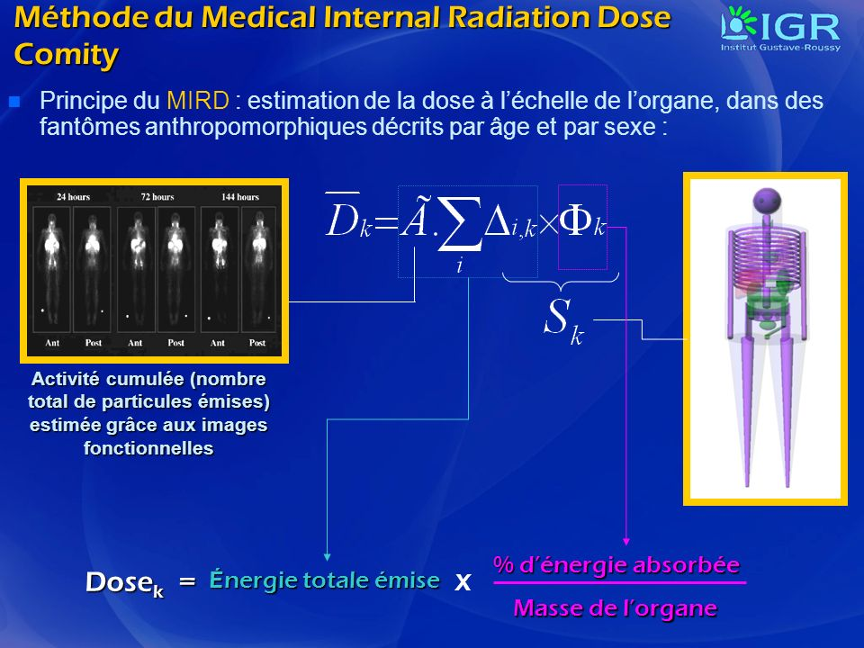 Méthode du Medical Internal Radiation Dose Comity