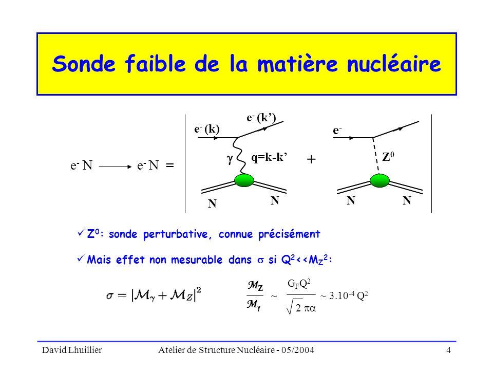 Sonde faible de la matière nucléaire
