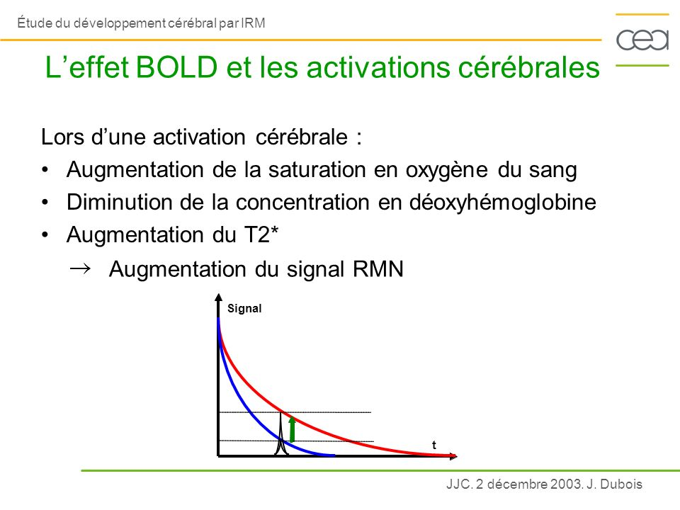 L'effet BOLD et les activations cérébrales