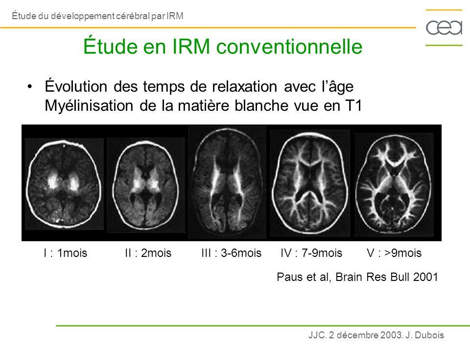 Étude en IRM conventionnelle