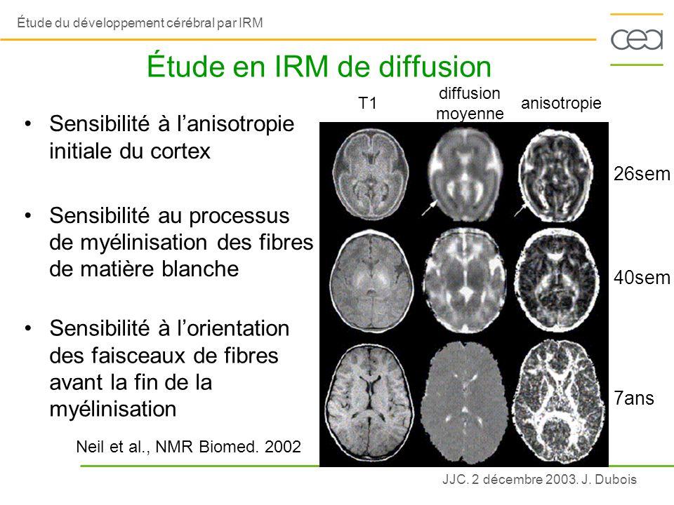 Étude en IRM de diffusion