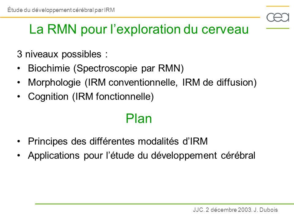 La RMN pour l'exploration du cerveau