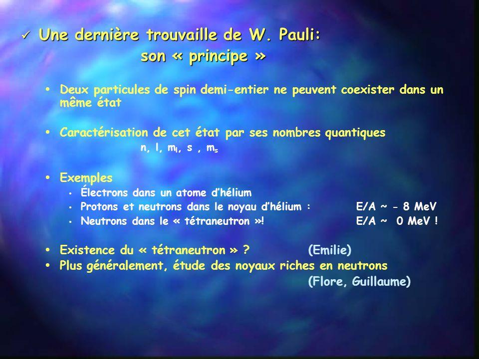 Une dernière trouvaille de W. Pauli: son « principe »