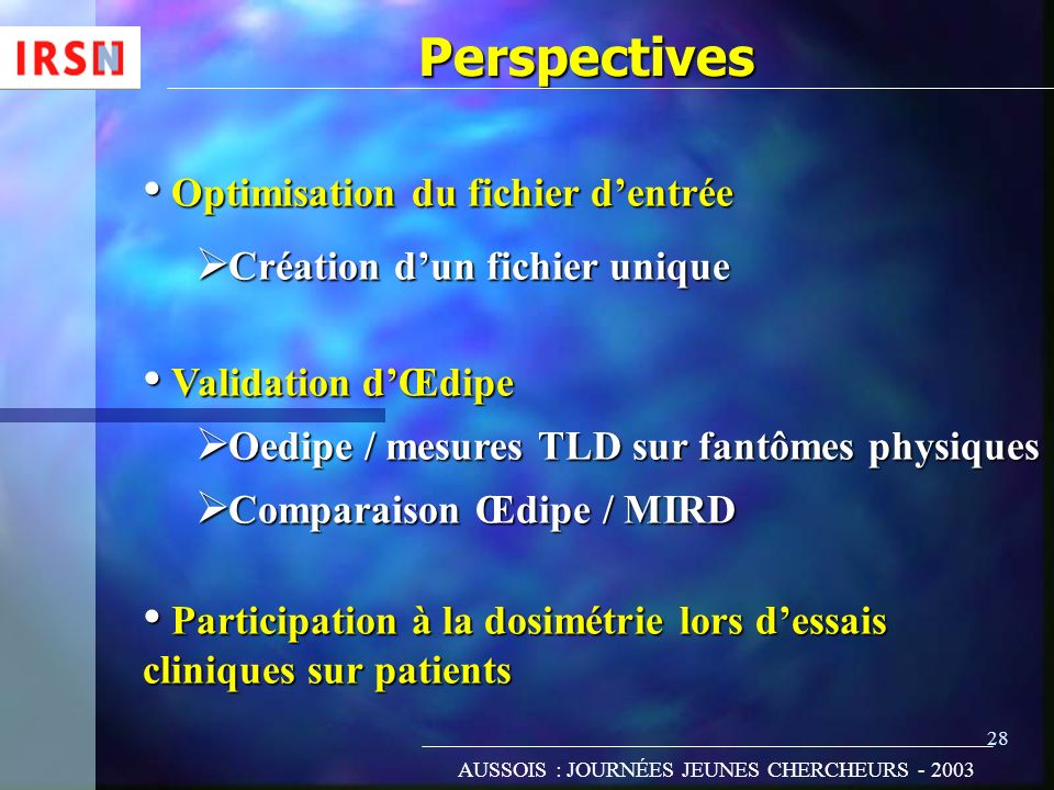 Perspectives Optimisation du fichier d'entrée