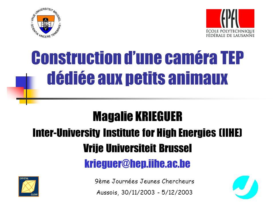 Construction d'une caméra TEP dédiée aux petits animaux