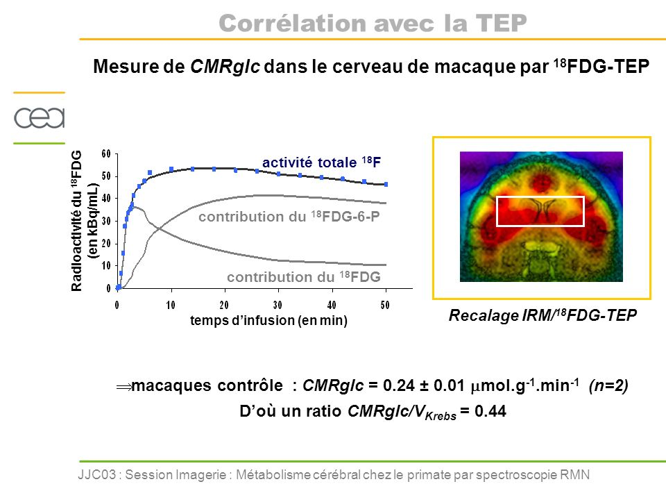 Mesure de CMRglc dans le cerveau de macaque par 18FDG-TEP