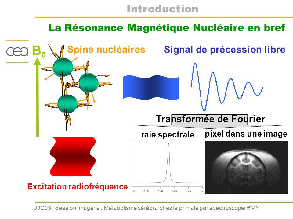 La Résonance Magnétique Nucléaire en bref