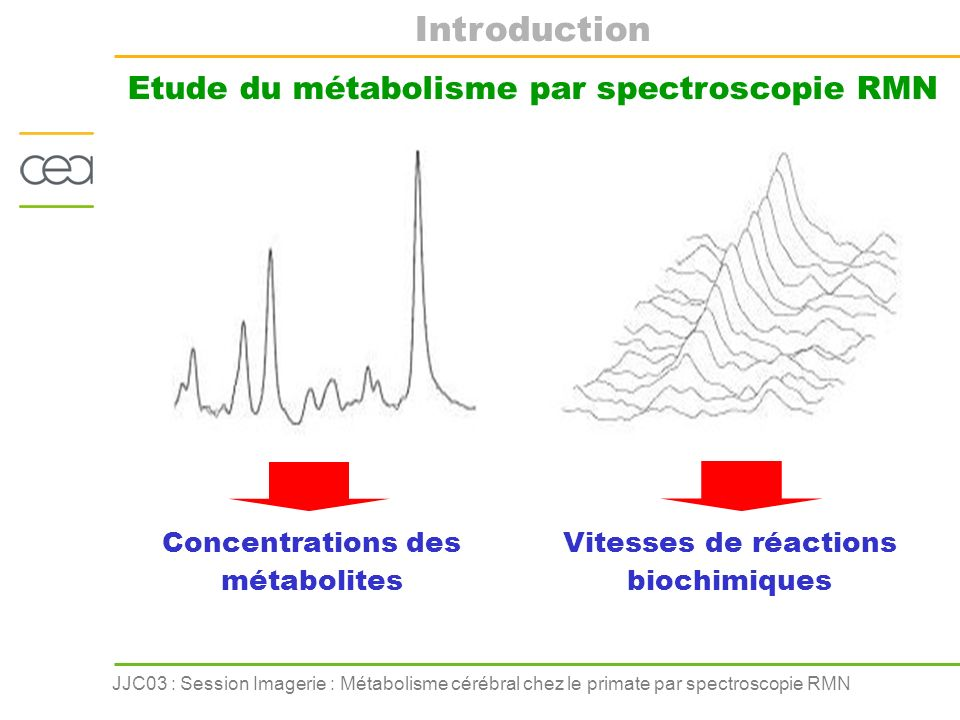 Introduction Etude du métabolisme par spectroscopie RMN