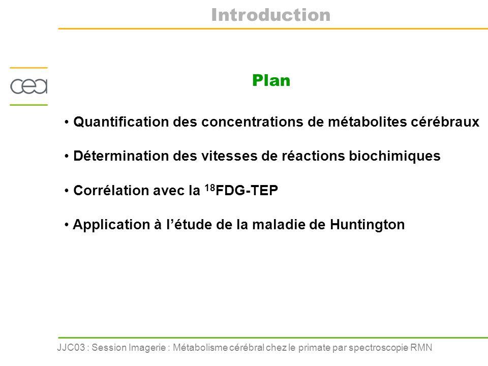 Introduction Plan. Quantification des concentrations de métabolites cérébraux. Détermination des vitesses de réactions biochimiques.