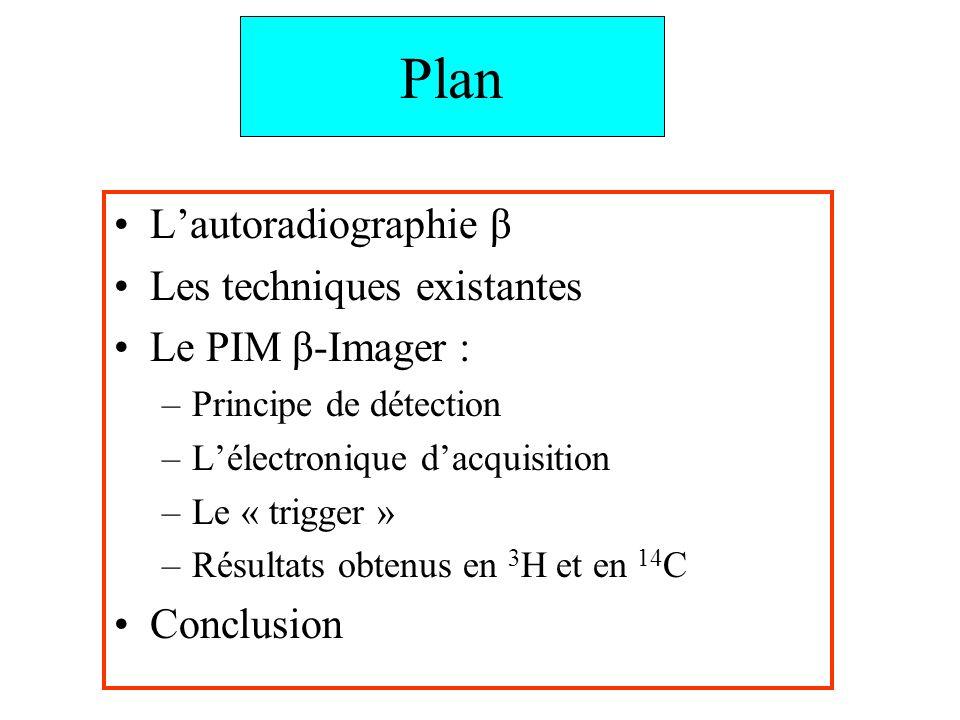 Plan L'autoradiographie β Les techniques existantes Le PIM β-Imager :