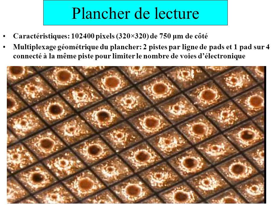Plancher de lecture Caractéristiques: 102400 pixels (320×320) de 750 μm de côté.