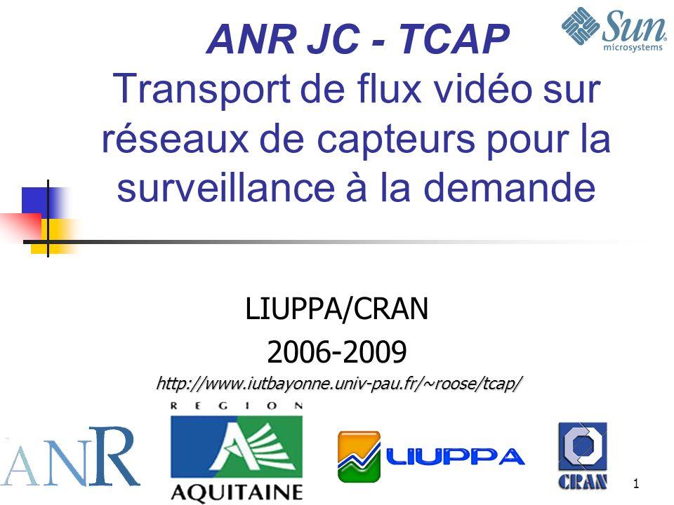 LIUPPA/CRAN 2006-2009 http://www.iutbayonne.univ-pau.fr/~roose/tcap/