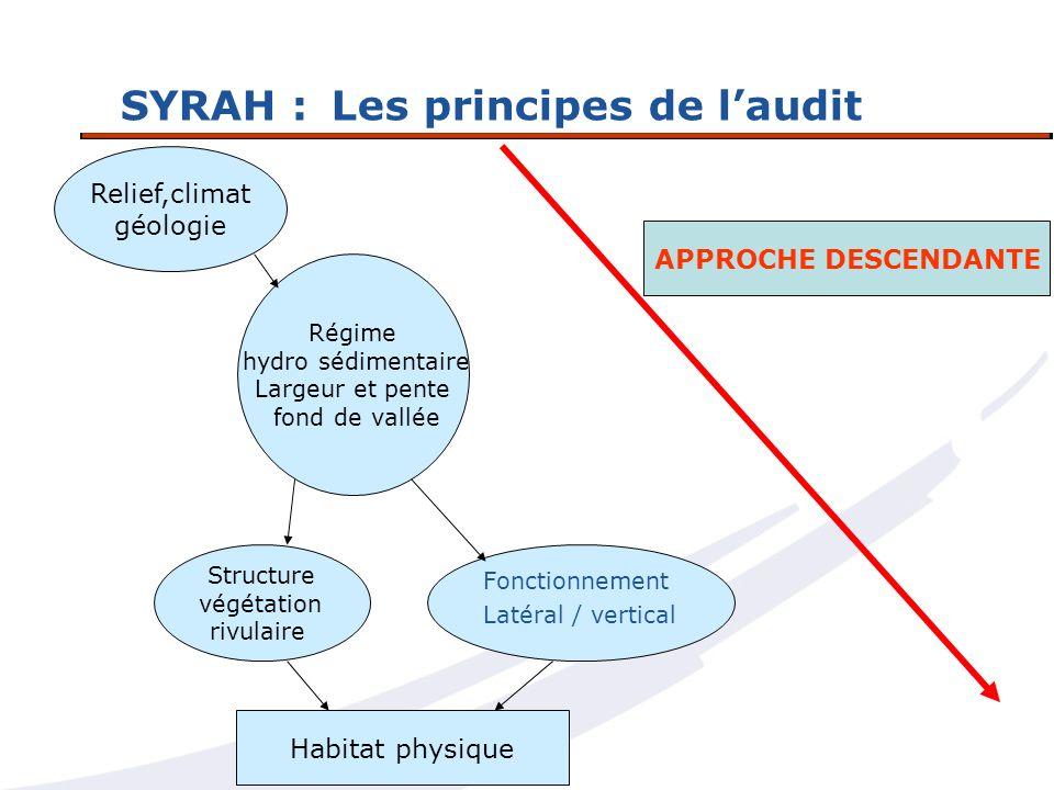 SYRAH : Les principes de l'audit