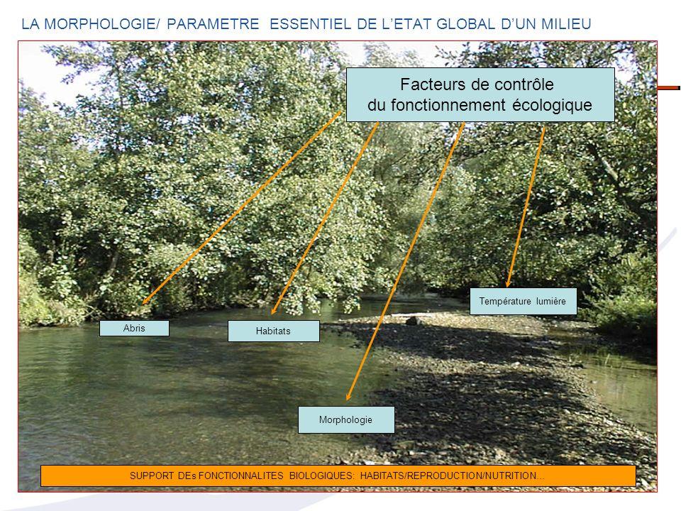 LA MORPHOLOGIE/ PARAMETRE ESSENTIEL DE L'ETAT GLOBAL D'UN MILIEU