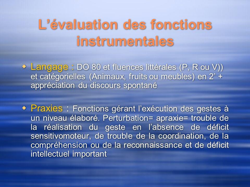 L'évaluation des fonctions instrumentales