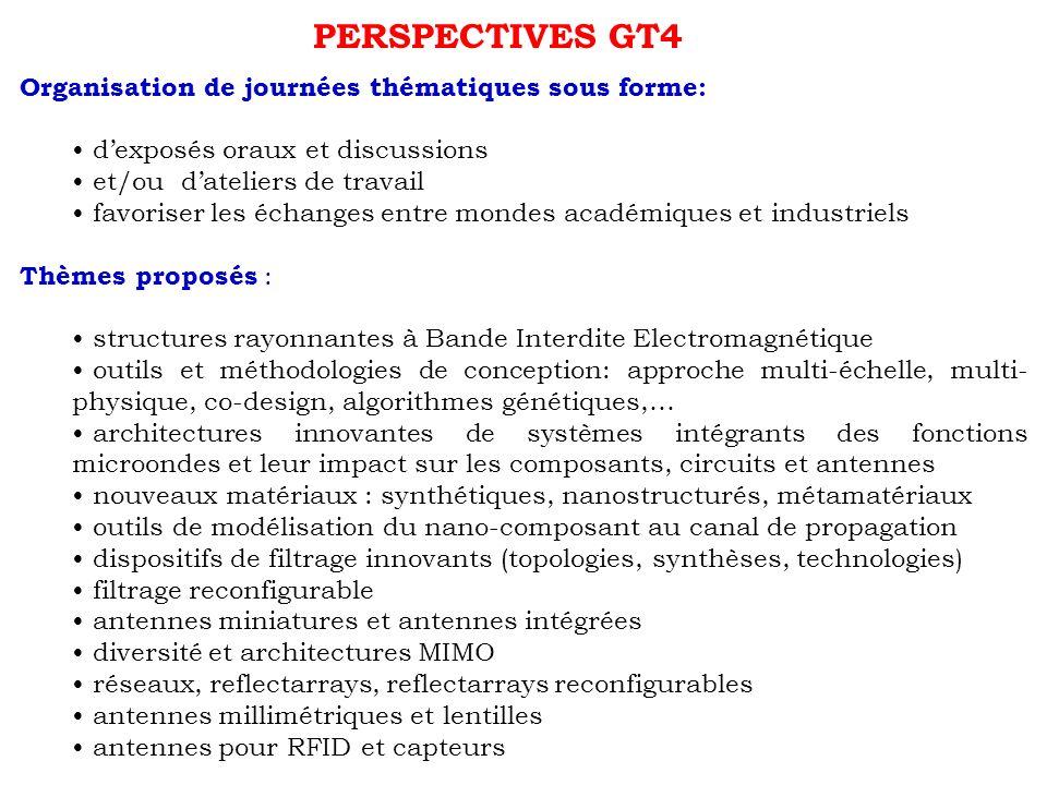 PERSPECTIVES GT4 Organisation de journées thématiques sous forme: