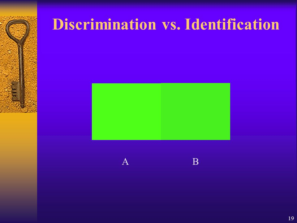 Discrimination vs. Identification