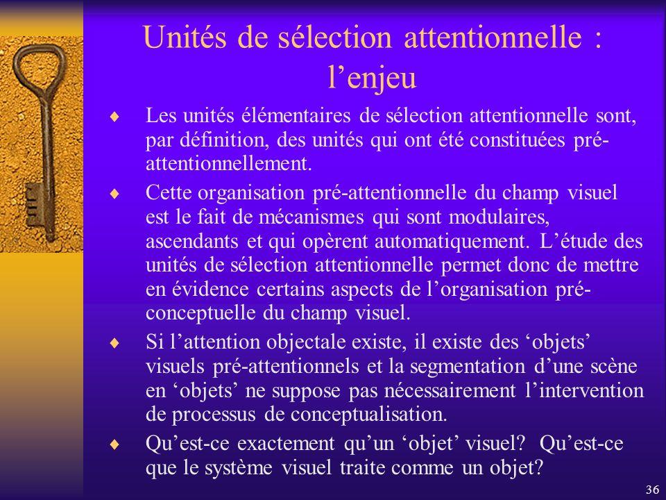 Unités de sélection attentionnelle : l'enjeu